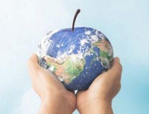 Speciale CAM 2020 le misure a favore della sostenibilità